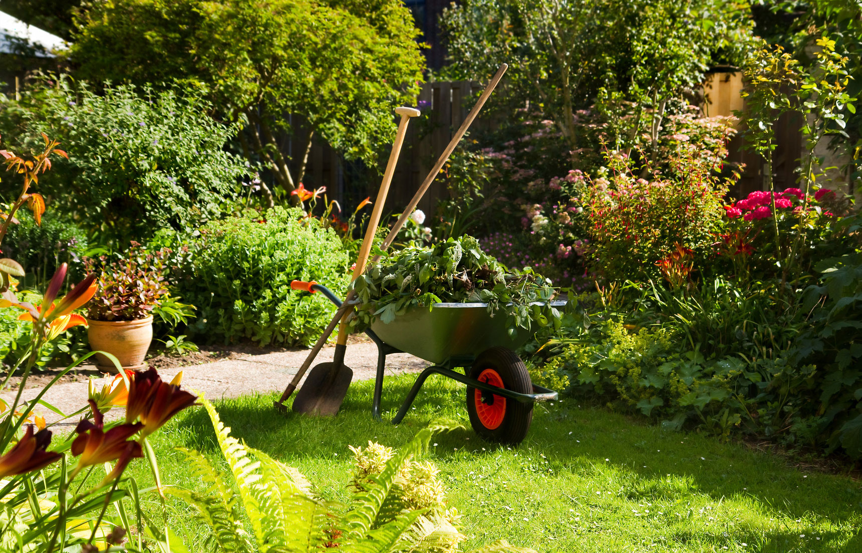 Lawn&Garden Maintenance